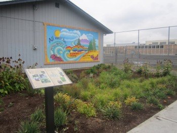 Gresham High School rain garden