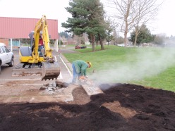 Curb cuts around existing storm drains were used to direct playground runoff to rain garden ponding areas first. Gardens overflow to existing storm drains when ponding areas are full.