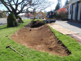 Jamie led City of Gresham Operations staff to excavate the garden to provide for a safe overflow during very heavy rains and enough ponding area to handle average Oregon storms.