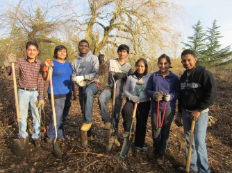 Students from Mt. Hood Community College plant trees along Fairview Creek.