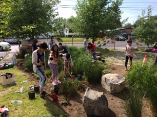 Students plant new native plants in their school rain garden (photo Nestor Campos)